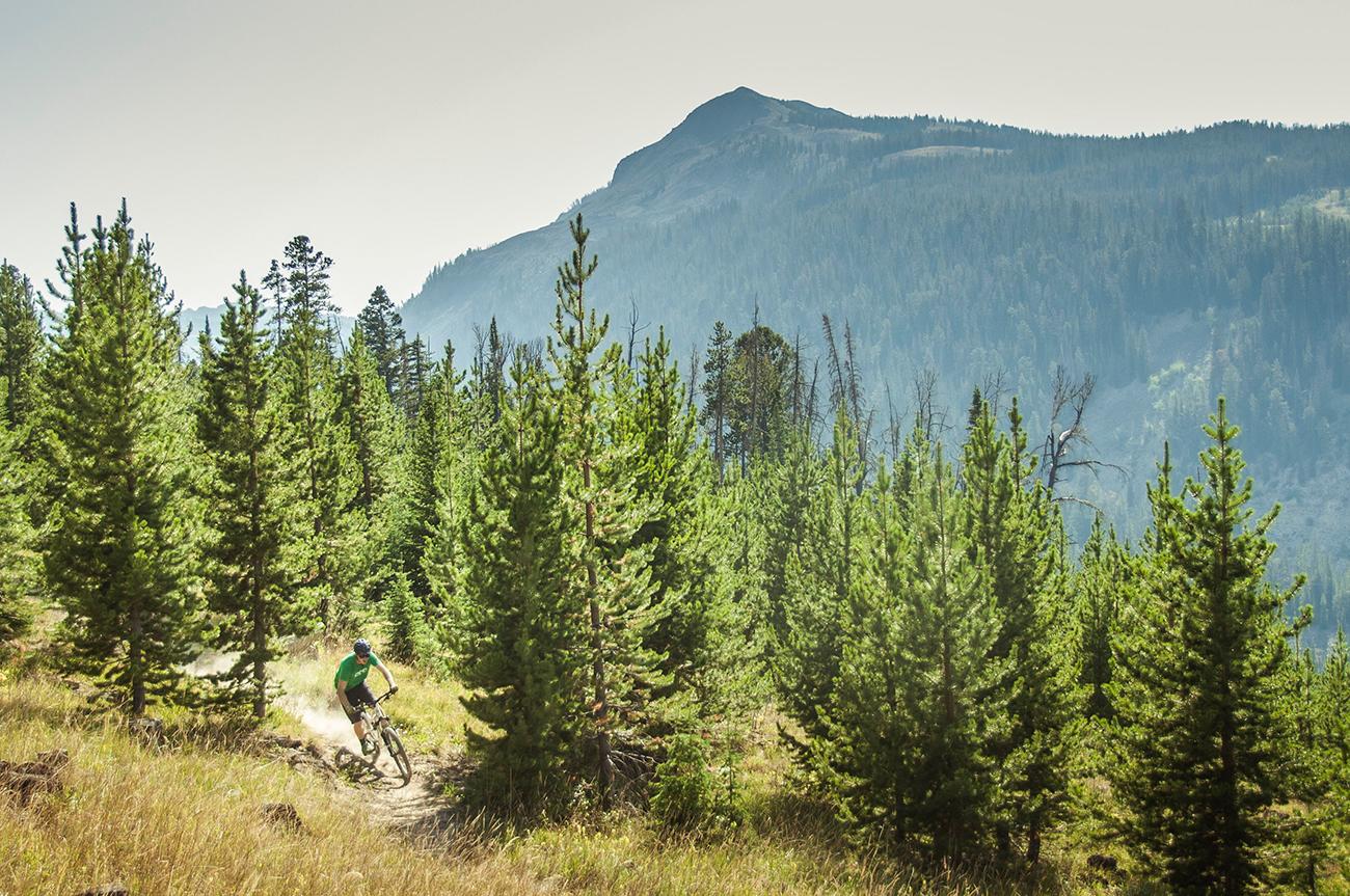Over 30 miles of biking trails feature amazing vistas, hidden meadows, and secret picnic spots.